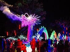 Tickets to Festival of Light with Winter Safari at Longleat Safari & Adventure Park