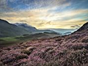 Rural Snowdonia Escape with Dining Option