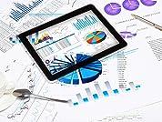 Online Microsoft Excel PivotTable Course