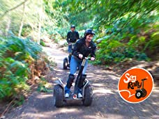 One-Hour Segway Experience for One, Two or Four People