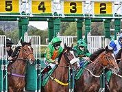 Tickets to Irish Raceday at Chepstow Racecourse